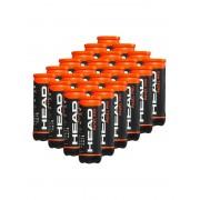 Bola de Padel Head Pro 3B - Caixa com 24 Tubos