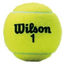 Bola de Tênis Wilson Championship - 3 Bolas