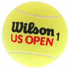 Bola de Tênis Wilson Us Open Hard Duty - 3 Bolas