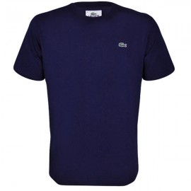 Camiseta Lacoste Technical - Azul