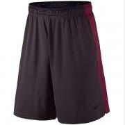 Shorts Nike Dry Fly 9 - Vinho