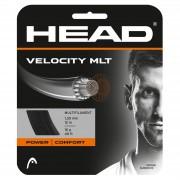Set de Corda Head Velocity - 16