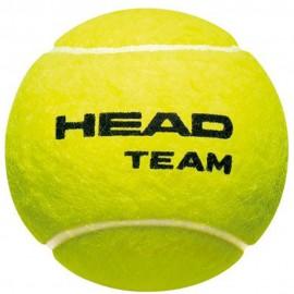 Bola de Tênis Head Team - 4 Bolas