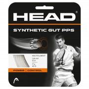 Set Head de Corda Synthetic Gut PPS 17 - Branca